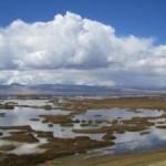 Lake Junin - Important place for Bird Watching in Peru