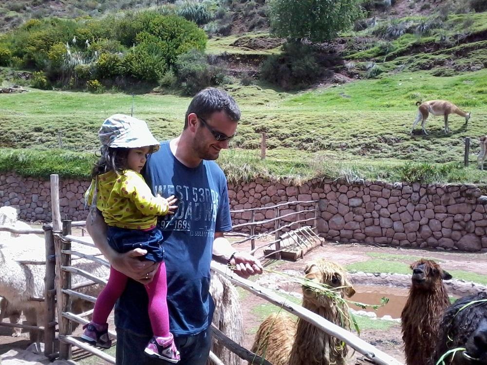 Paul Jones (the author) and Jessica feeding alpaca