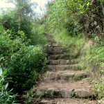 Inca Trail stone path