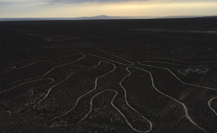 The Nazca Lines - one of the nazca lines