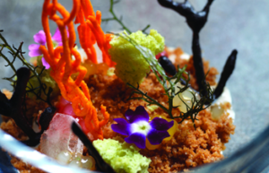 Restaurants In Miraflores - colorful dish made at Maido served on a plate