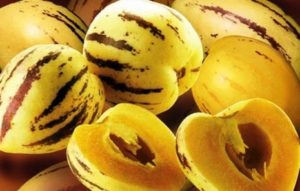 Peruvian Fruits - Pepino dulce fruit
