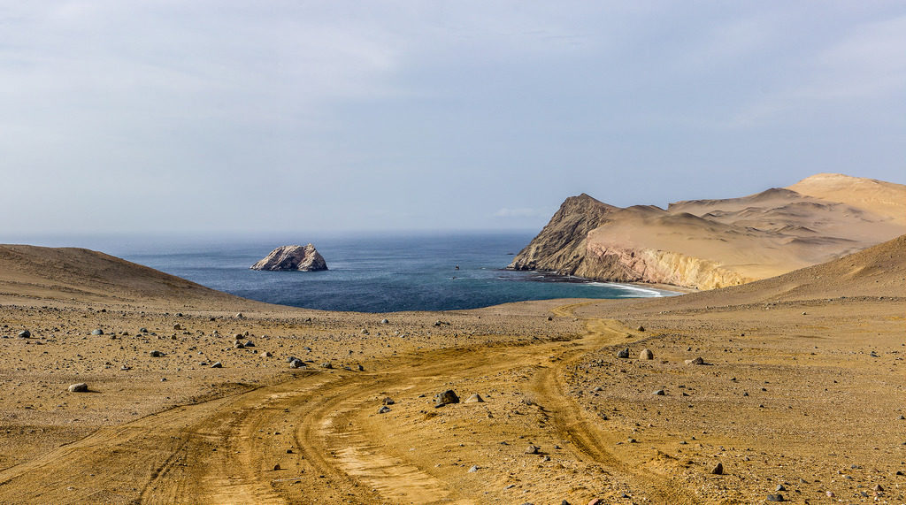 The tracks of the National Reserve in Paracas Peru